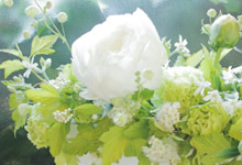 Flower Life Styling+