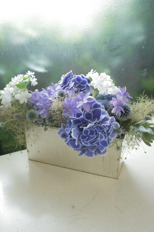flower-22