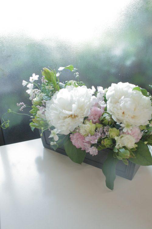 flower-62